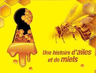 Une histoire d ailes et de miel